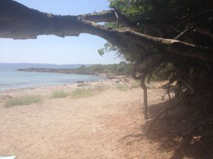 golden beach lesvos